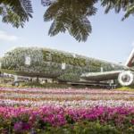 Парк цветов в Дубае – Dubai Miracle Garden